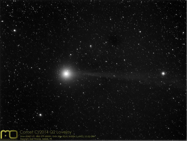 Cometa C/2014 Q2 Lovejoy, Copyright Jose Miranda